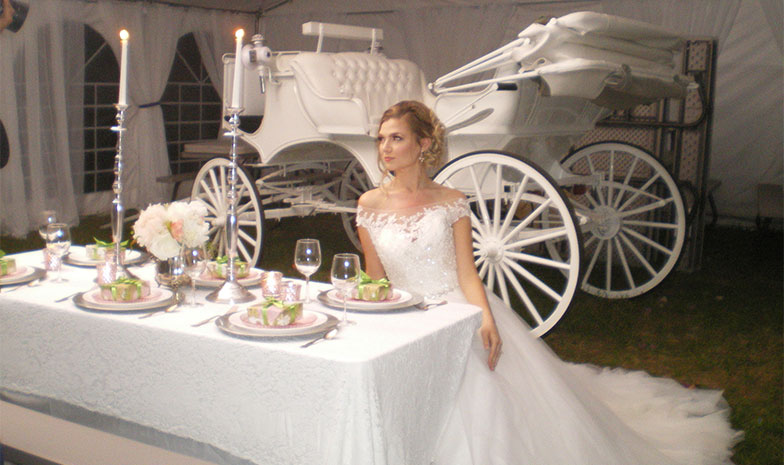 Country Wedding and  Receptions